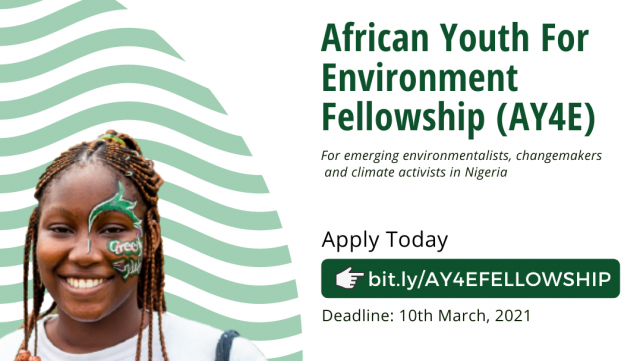 Applications for the AY4E FELLOWSHIP Now Open to Youths in Nigeria